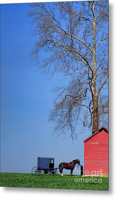An Amish Scene Metal Print by Olivier Le Queinec