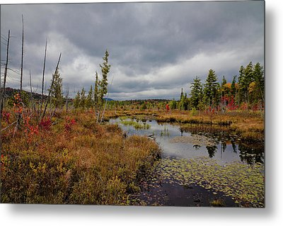 Metal Print featuring the photograph An Autumn Afternoon On Raquette Lake by David Patterson