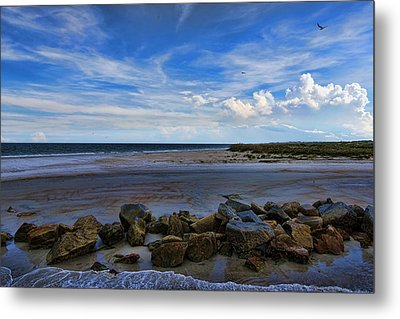 An Endless Summer Metal Print by Anthony Baatz