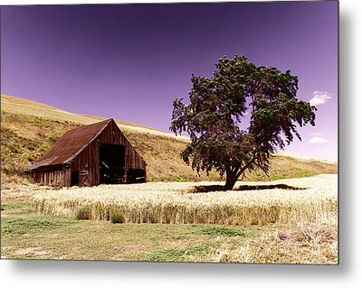 An Old Barn And A Tree Metal Print