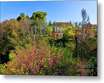 An Old House In Provence Metal Print by Olivier Le Queinec