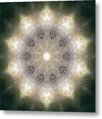 Ancient Light X Metal Print by Lisa Lipsett