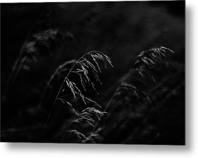 And Yet More Darkness Metal Print