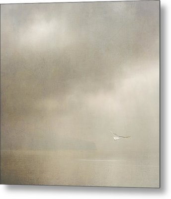 Metal Print featuring the photograph Angel  by Sally Banfill