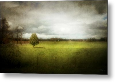 Angustown Pasture Metal Print by Cynthia Lassiter