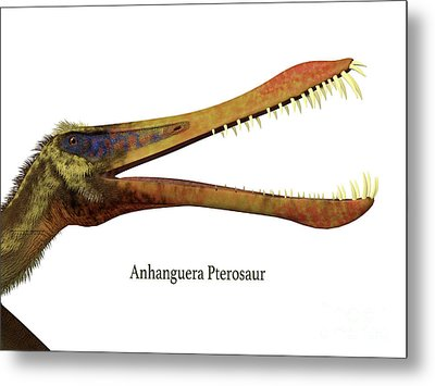 Anhanguera Reptile Head With Font Metal Print by Corey Ford