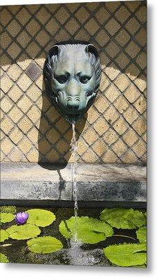 Animal Fountain Head Metal Print by Teresa Mucha