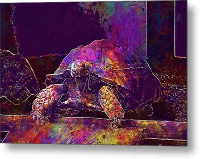 Metal Print featuring the digital art Animal Turtle Zoo  by PixBreak Art