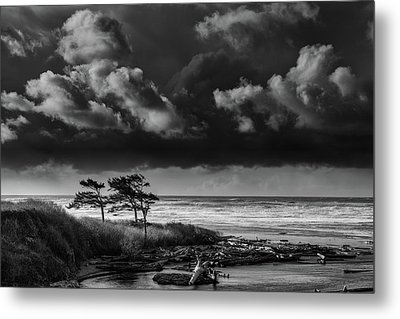 Metal Print featuring the photograph Another Day At Kalaloch Beach by Dan Mihai