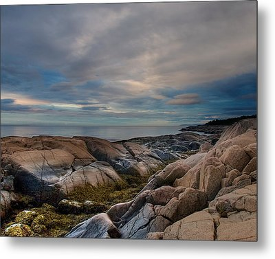 Another Day On Earth Metal Print by Irene Suchocki