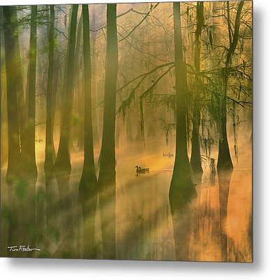 Another Day Metal Print by Tim Fitzharris