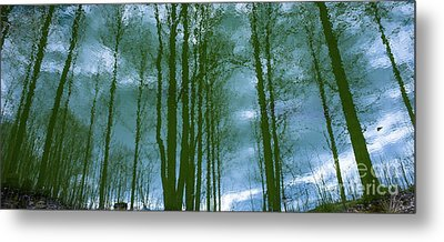 Another Place And Time Metal Print