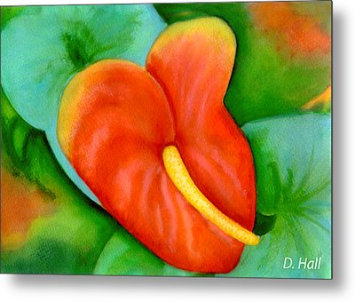 Anthurium Flowers #228 Metal Print by Donald k Hall