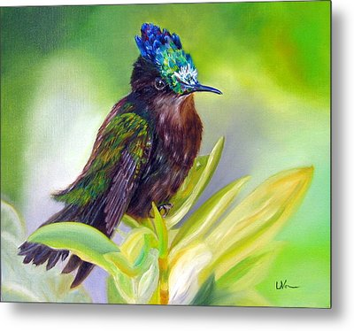Antillean Crested Hummingbird Metal Print by LaVonne Hand