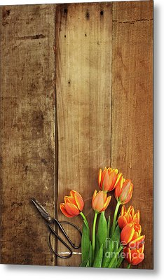 Metal Print featuring the photograph Antique Scissors And Tulips by Stephanie Frey
