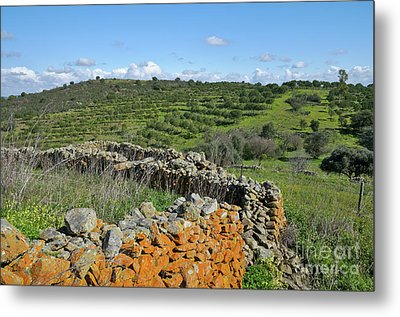 Antique Stone Wall Of An Old Farm Metal Print by Angelo DeVal