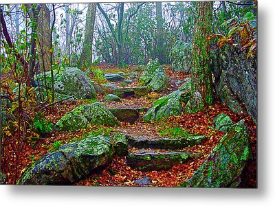 Appalachain Trail In The Clouds Metal Print by The American Shutterbug Society