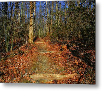 Appalachian Trail In Maryland Steps Metal Print by Raymond Salani III