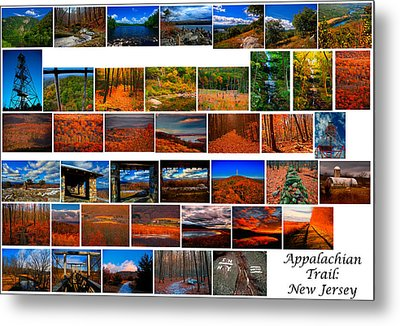 Appalachian Trail In New Jersey Metal Print by Raymond Salani III