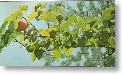 Apple A Day Metal Print
