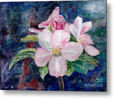 Apple Blossom - Painting Metal Print