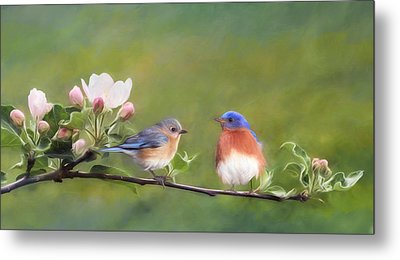 Apple Blossoms And Bluebirds Metal Print