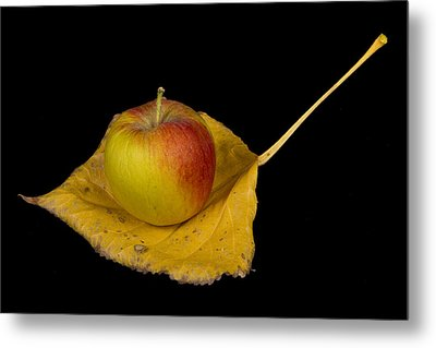 Apple Harvest Autumn Leaf Metal Print by James BO  Insogna