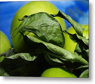 Metal Print featuring the photograph Apple Leaves by Michael Canning