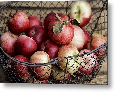 Apples Metal Print by Nailia Schwarz