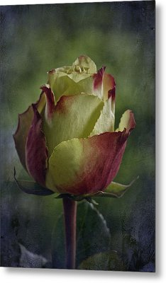 April 2017 Rose - Inspired By Emerson Metal Print by Richard Cummings