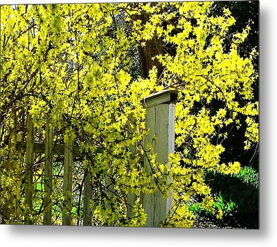 April Gold Metal Print by Joyce Kimble Smith