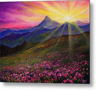 April Sunset Metal Print by C Steele