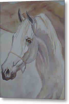 Arab Stallion In The Desert Metal Print