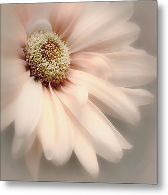 Arabesque In Peach Glow Metal Print