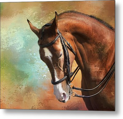 Metal Print featuring the photograph Arabian Horse by Theresa Tahara