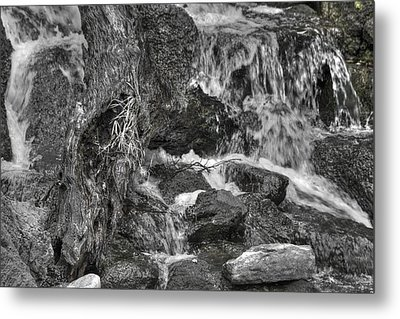 Arboretum Waterfall Bw Metal Print