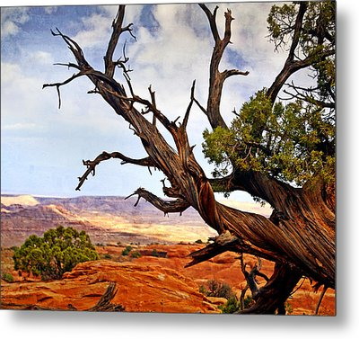 Arches Landscape 7a Metal Print by Marty Koch