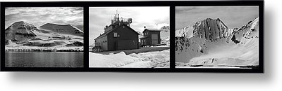 Arctic Triptych Metal Print by Terence Davis