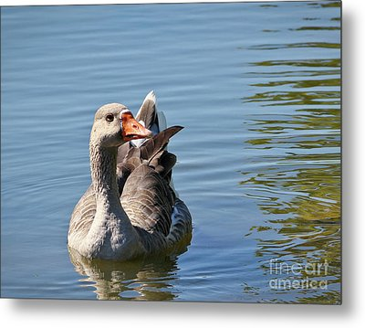 Are You Talking To Me Metal Print