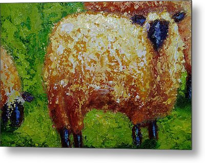 Aren't Ewe Cute Metal Print