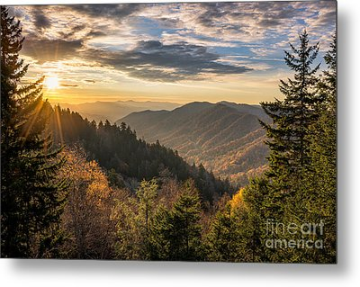 Arise Metal Print by Anthony Heflin