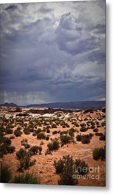 Arizona Rainy Desert Landscape Metal Print by Ryan Kelly