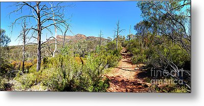 Metal Print featuring the photograph Arkaroo Rock Hiking Trail.wilpena Pound by Bill Robinson