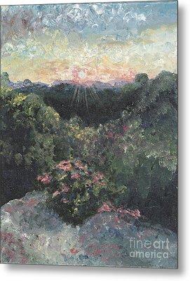 Arkansas Mountain Sunset Metal Print by Nadine Rippelmeyer