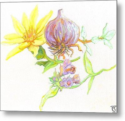 Arnica Garlic Thyme And Comfrey Metal Print by Cameron Hampton PSA