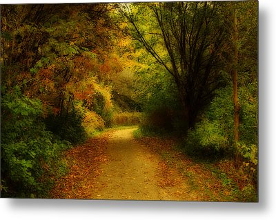 Metal Print featuring the photograph Around The Bend - Landscape by Anthony Rego