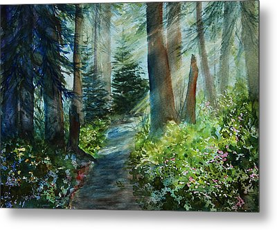 Around The Path Metal Print by Kerri Ligatich