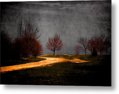 Art In The Park Metal Print by Milena Ilieva