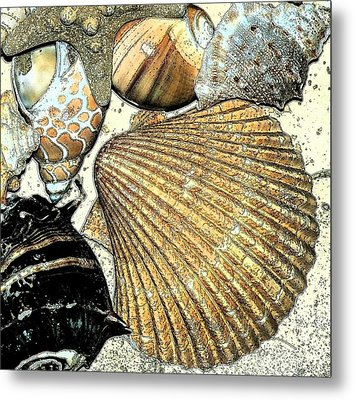 Art Shell 2 Metal Print by Stephanie Troxell