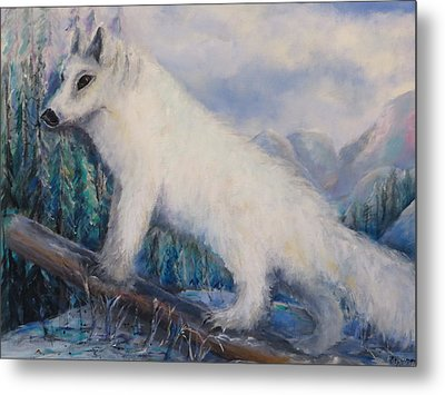 Artic Fox Metal Print by Bernadette Krupa
